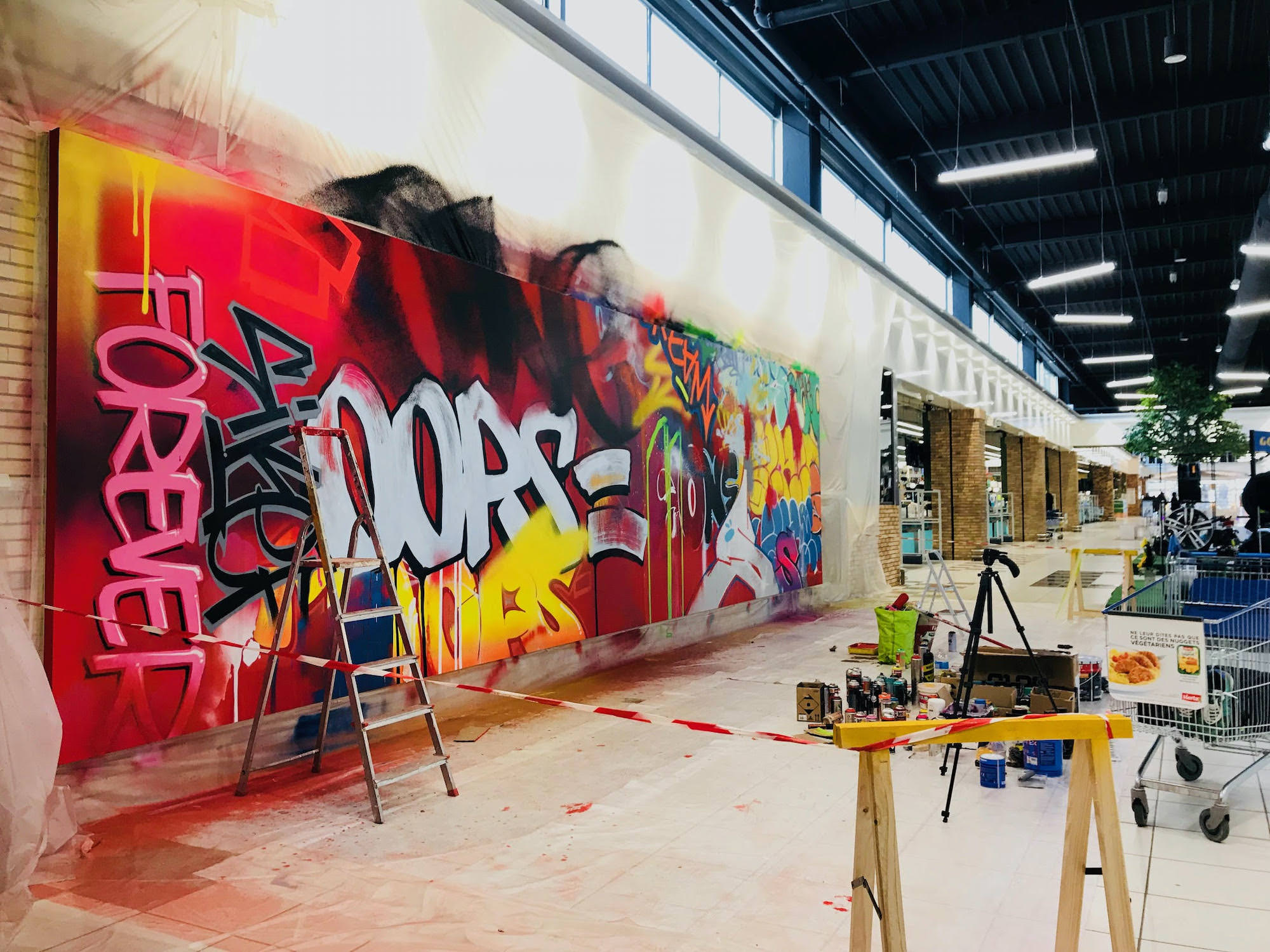 graffeur_fresque_auch_toulouse_streetart