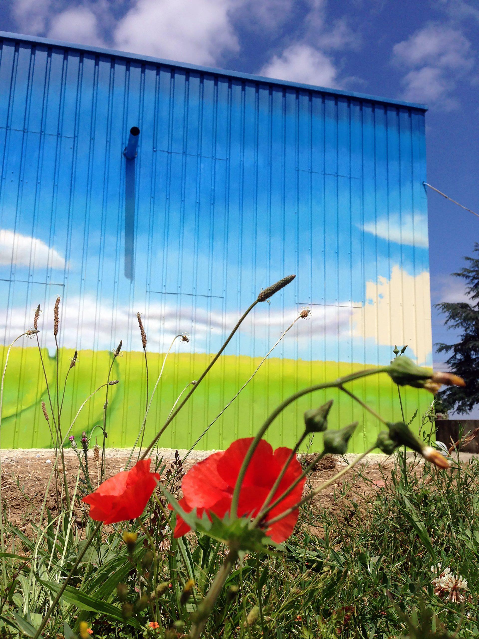 smivom fresque nature paysage environnement peintre decoration