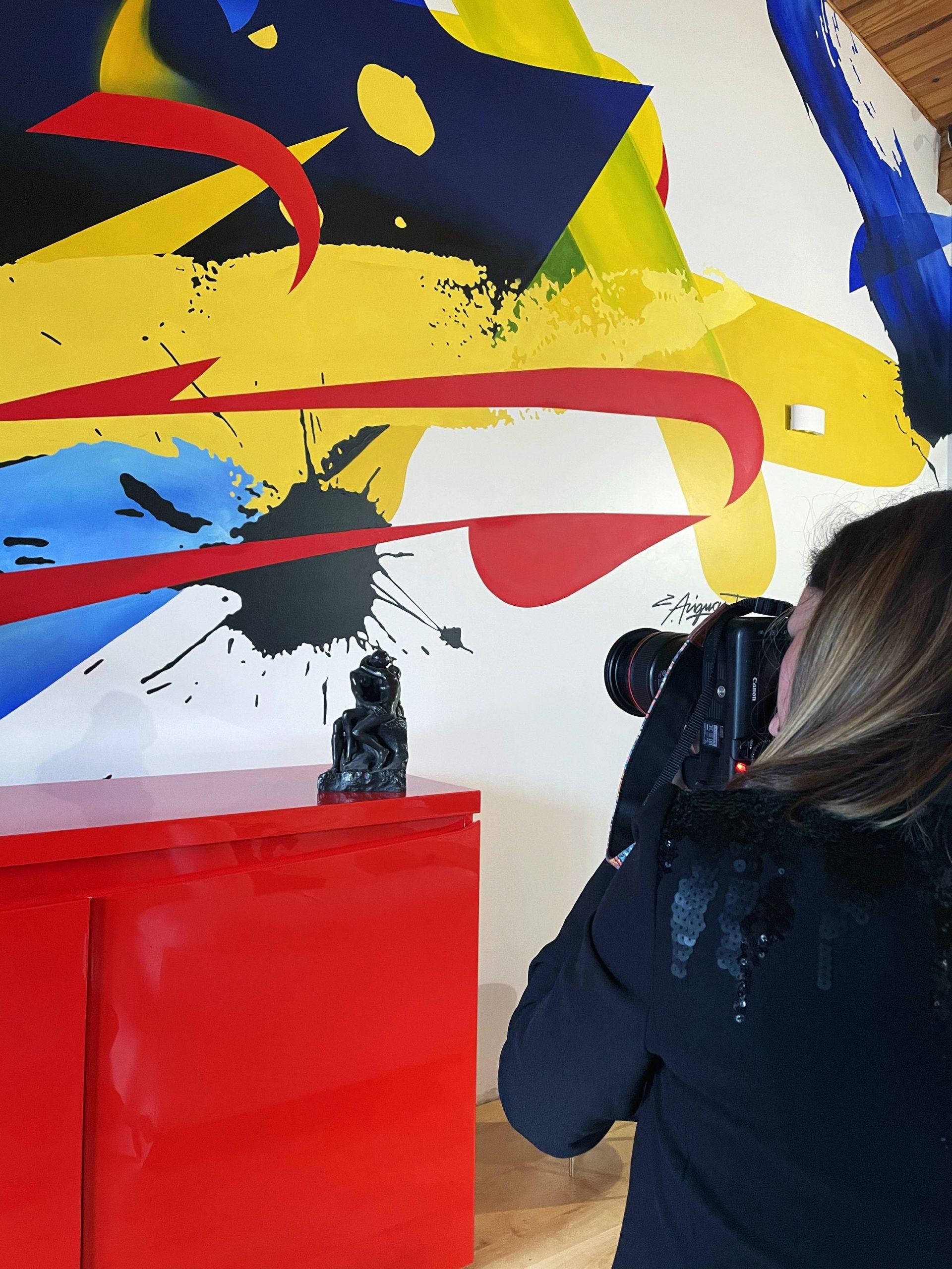 Fresque-graffeur-toulouse-design-contemporain-artiste-julien-avignon